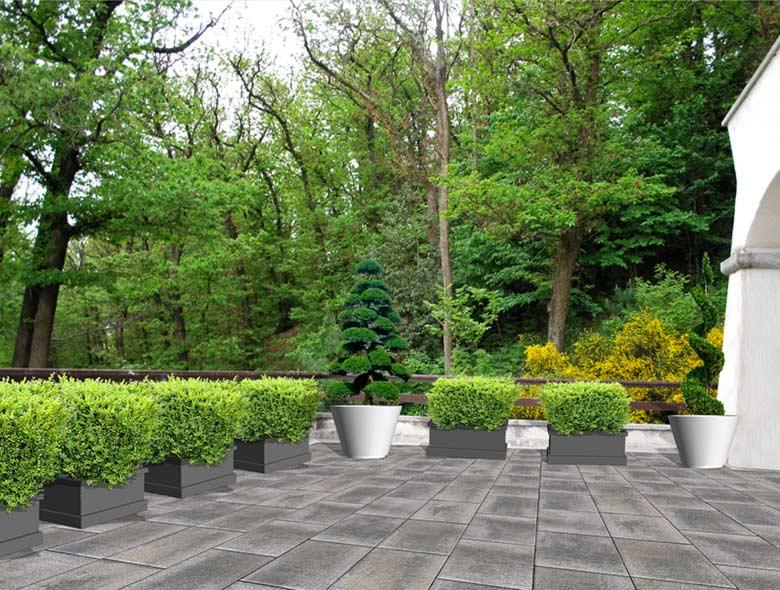 Progettazione giardini progettazione 3d giardino aree for Progettazione giardini software